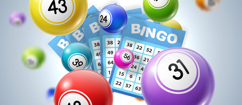 Play Bingo Online Today
